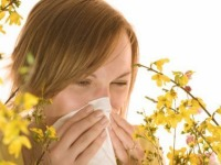 Allergies and Allergy Remedies - UK - February 2010