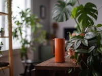 Consumer Attitudes Towards Cut Flowers and Houseplants: Inc Impact of COVID-19 - UK - May 2020